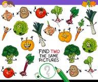 Achado dois o mesmo jogo dos vegetais Imagem de Stock
