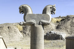 Achaemenid Griffin, or Homa, in Persepolis, Iran Stock Photography
