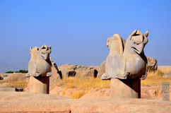 Achaemenid griffin Royalty Free Stock Images