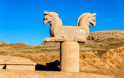 Achaemenid griffin at Persepolis Royalty Free Stock Images