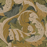 Achantus Muster stock abbildung