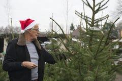 Achat d'un arbre de Noël Photos stock