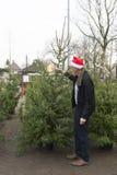 Achat d'un arbre de Noël Photos libres de droits