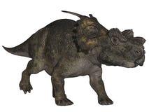Achelousaurus - 3D Dinosaur Stock Images