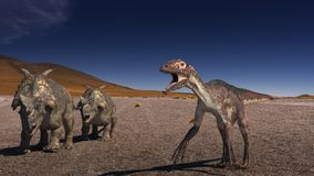 Achelousaurus vs Raptor Stock Photos