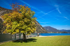Achensee in Austria. Autumn at the lake Achensee in Austria Stock Images