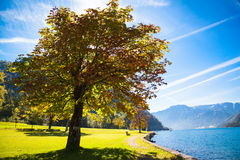 Achensee in Austria. Autumn at the lake Achensee in Austria Stock Image