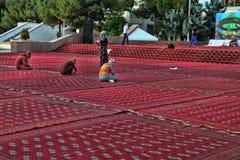 ACHGABAT, TURKMÉNISTAN - janvier, 04, 2017 : Arbre de nouvelle année dans t Image libre de droits