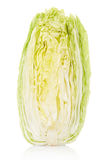 Achicoria, ensalada de Milán Fotografía de archivo