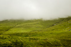 Achill island Royalty Free Stock Photos