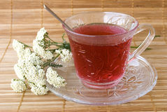 Achillea millefolium tea. On wooden mat with fresh herbs royalty free stock image