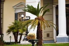 Achilleions-Palast Korfu-Insel, Griechenland Stockbilder