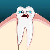 Aching tooth Stock Images