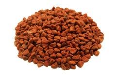 Achiote种子 免版税库存照片