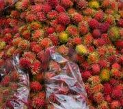 Achiote-Früchte Stockfotos