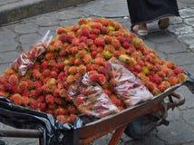 Achiote-Früchte Lizenzfreie Stockfotografie