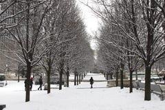 Achitecture of Chicago, Il. Architecture of Chicago, Il, winter park stock photography