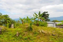 Achitecture de l'état de Chiapas, Mexique photographie stock