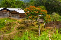 Achitecture do estado de Chiapas, México Fotografia de Stock