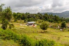 Achitecture van de Chiapas-staat, Mexico stock afbeeldingen