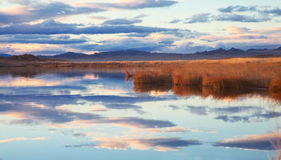 Achitnoor lake in the Mongolian Stock Photography