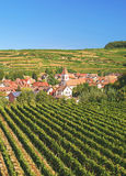 Achkarren,Kaiserstuhl,black forest,germany Stock Images