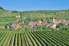 Achkarren, région de vin de Kaiserstuhl, forêt noire, Allemagne Photos stock