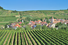 Achkarren, regione del vino di Kaiserstuhl, foresta nera, Germania Fotografie Stock