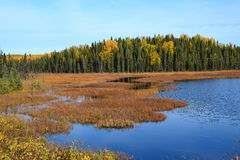 Achorage της Αλάσκας στοκ φωτογραφία με δικαίωμα ελεύθερης χρήσης