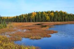 Achorage von Alaska Lizenzfreie Stockfotografie
