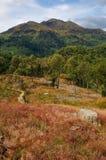 achray горы loch katrine Стоковое фото RF