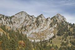 Achselköpfe in Benediktenwand-Bereich Stockfoto
