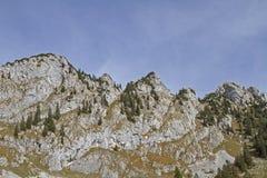 Achselköpfe in Benediktenwand-Bereich Stockbilder
