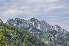 Achselkopf in Braueck-Bereich Stockfotos