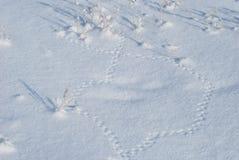 Acht auf einem Schnee von den Mäusespuren Lizenzfreies Stockbild