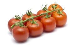 Acht Cherry Tomatoes auf einem weißen Hintergrund Stockbild
