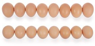 Acht Eier in der Reihe Stockfotografie