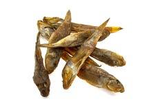 Acht getrocknete Fische Stockfotografie