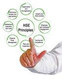 Acht HSE-Prinzipien Stockfoto