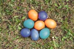 Acht Ostereier auf dem Rasen Stockbild