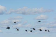 Acht schwarze Falken und zwei Hubschrauber Augustas AW109 Stockfotos