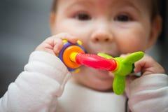 Acht van het babymaanden oud meisje die haar stuk speelgoed zuigen Stock Fotografie