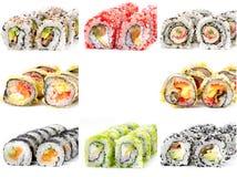 Acht verschiedene Sushirollen, weißer Hintergrund Stockbild