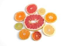 Acht verschiedene Zitrusfruchtarten vereinbarten in einer Blumenform: rote Pampelmuse, rote Pampelmuse, Zitrone, Mandarine, gelbe Lizenzfreie Stockfotos