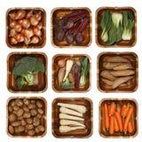 Acht verschillende groenten in houten mand royalty-vrije stock afbeelding