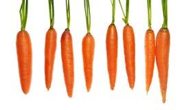 Acht wortelen stock foto