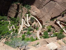 Achtbanen in Nationaal Park Zion Royalty-vrije Stock Foto's