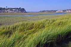 Achter baaimoerasland in New Port Beach Californië. Royalty-vrije Stock Fotografie