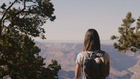 Achter de vrouw van de menings gelukkige jonge reiziger wandeling, die smartphonefoto van verbazend Grand Canyon -meningslandscha stock videobeelden