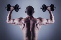 Achter spieren Royalty-vrije Stock Afbeeldingen